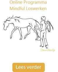 online-programma-mindful-loswerken